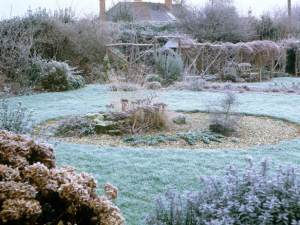Winter Garden image 1 jpeg