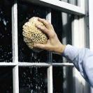 image #6 window washing blog